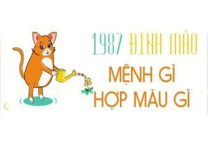 TUOI-1987-HOP-MAU-GI