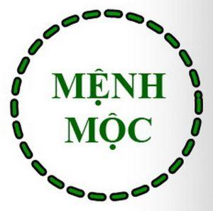 menh-moc-hop-voi-mau-gi